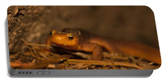 California Newt Portable Battery Charger by Ron Sanford