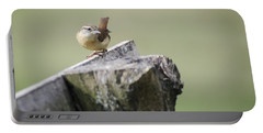Carolina Wren Portable Battery Charger by Heather Applegate