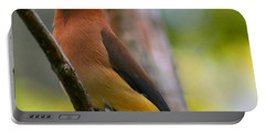 Cedar Wax Wing Portable Battery Charger by Roger Becker