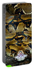 Close-up Of A Boa Constrictor, Arenal Portable Battery Charger by Panoramic Images