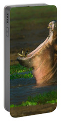 Close-up Of A Hippopotamus Yawning Portable Battery Charger by Panoramic Images