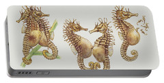 Close-up Of Sea Horses Portable Battery Charger by English School