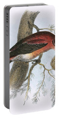 Crossbill Portable Battery Charger by English School