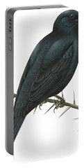 Cuckoo Shrike Portable Battery Charger by Anonymous