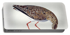 Curlew Sandpiper Portable Battery Charger by Charles Collins