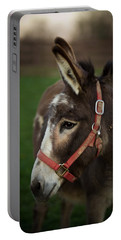 Donkey Portable Battery Charger by Shane Holsclaw