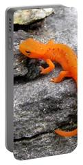 Orange Julius The Eastern Newt Portable Battery Charger by Lori Pessin Lafargue