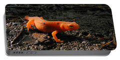 Eastern Newt Red Eft Portable Battery Charger by Christina Rollo