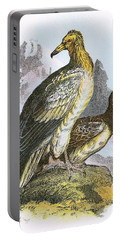 Egyptian Vulture Portable Battery Charger by English School