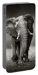 Elephant Approach From The Front Portable Battery Charger by Johan Swanepoel