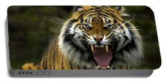 Eyes Of The Tiger Portable Battery Charger by Mike  Dawson