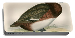 Ferruginous Duck Portable Battery Charger by Beverley R Morris