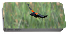 Flight Of The Blackbird Portable Battery Charger by Mike  Dawson