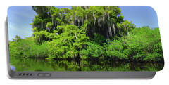 Florida Swamps Portable Battery Charger by Carey Chen