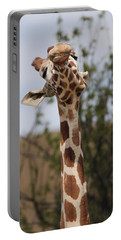 Giraffe Neck And Teeth Portable Battery Charger by Dan Sproul