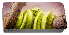Green Tree Python Portable Battery Charger by Pati Photography