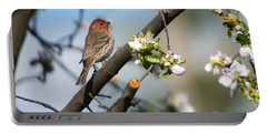 House Finch Portable Battery Charger by Mike Dawson