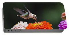 Hummingbird In Flight With Orange Zinnia Flower Portable Battery Charger by Christina Rollo