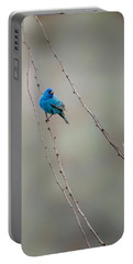 Indigo Bunting Portable Battery Charger by Bill Wakeley
