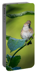 Indigo Bunting Female Portable Battery Charger by Bill Wakeley