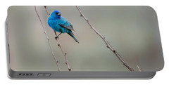 Indigo Bunting Square Portable Battery Charger by Bill Wakeley