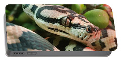 Jungle Python Portable Battery Charger by Kelly Jade King