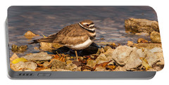 Kildeer On The Rocks Portable Battery Charger by Robert Frederick