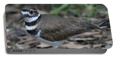 Killdeer Portable Battery Charger by Dan Sproul