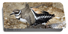 Killdeer Fakeout Portable Battery Charger by Dana Bechler