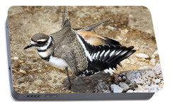 Killdeer Fakeout Portable Battery Charger by Shane Bechler