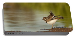 Killdeer Fluffing Up Portable Battery Charger by Bryan Keil