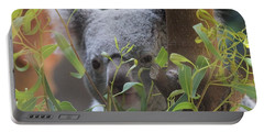 Koala Bear  Portable Battery Charger by Dan Sproul