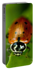 Ladybug On Green Portable Battery Charger by Iris Richardson