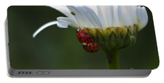 Ladybugs On Shasta Daisy Portable Battery Charger by Sharon Talson