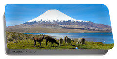 Lake Chungara Chilean Andes Portable Battery Charger by Kurt Van Wagner