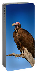 Lappetfaced Vulture Against Blue Sky Portable Battery Charger by Johan Swanepoel
