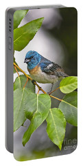 Lazuli Bunting 3a Portable Battery Charger by Sharon Talson