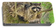Lazy Day Raccoon Portable Battery Charger by Jennie Marie Schell