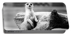 Little Meerkat Portable Battery Charger by Pati Photography