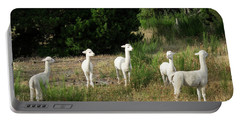 Llamas Standing In A Forest Portable Battery Charger by Panoramic Images