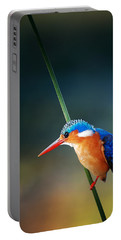 Malachite Kingfisher Portable Battery Charger by Johan Swanepoel