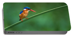 Malachite Kingfisher Tanzania Africa Portable Battery Charger by Panoramic Images