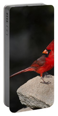 Male Cardinal Portable Battery Charger by Gary Langley