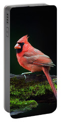 Male Northern Cardinal Cardinalis Portable Battery Charger by Panoramic Images