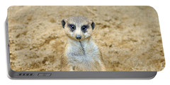 Meerkat Portable Battery Charger by Aimee L Maher Photography and Art Visit ALMGallerydotcom