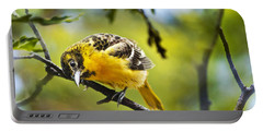 Musing Baltimore Oriole Portable Battery Charger by Christina Rollo