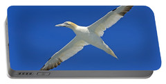 Northern Gannet Portable Battery Charger by Tony Beck