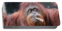 Orangutan Portrait Portable Battery Charger by Dan Sproul