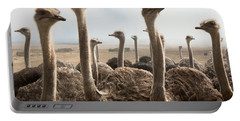 Ostrich Heads Portable Battery Charger by Johan Swanepoel