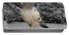 Pigeon In New York City Portable Battery Charger by Dan Sproul